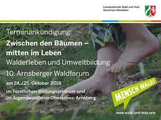 Flyer Arnsberger Waldforum
